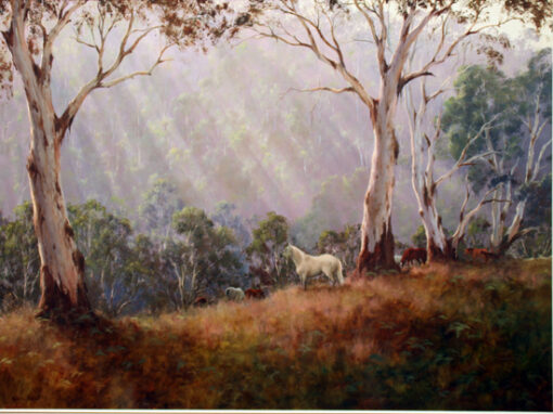 morpeth art gallery, hunter valley, newcastle, nsw, investment art, fine art, original, artwork, collector, investment, artist, oil, landscape, australian bush, sheep, cattle, rays of light, kevin best, king of the mountain, stretched canvas, light, outback, high country, muster