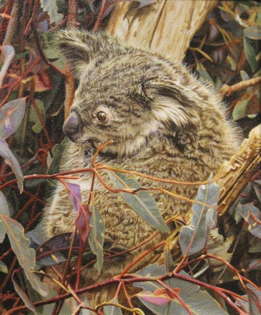 morpeth art gallery, hunter valley, newcastle, nsw, investment art, fine art, original, artwork, tender tips, koala, stephen jesic, collector, investment, artist, giclee, reproduction, print