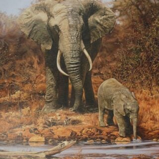 morpeth art gallery, the matriarch, elephant, stephen jesic, hunter valley, newcastle, nsw, investment art, fine art, original, artwork, the matriarch, collector, investment, artist, giclee, reproduction, print