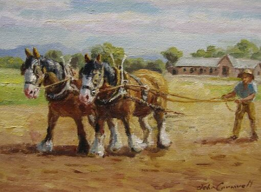 morpeth art gallery, hunter valley, newcastle, nsw, investment art, fine art, original, artwork, collector, investment, artist, portrait, oil, stretched canvas, henry with the harrow, john cornwell, canvas board, wildlife, landscape, acrylic, artists