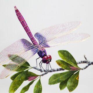 morpeth art gallery, hunter valley, newcastle, nsw, investment art, fine art, original, artwork, collector,fiery flight, dragonfly, gordon hanley ,investment, artist, giclee, reproduction, print