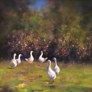 morpeth art gallery, hunter valley, newcastle, nsw, investment art, fine art, original, artwork, collector, investment, artist, oil, sofala, kangaroo valley, bellingen, gloucester, macleay valley, hill end, board, stretched canvas, landscape, seascape, i'm the boss, figurative, clouds, cloud, australian art gifts,