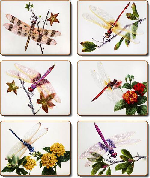 Delicate Wings Set 6 Coasters -