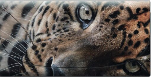 Garry Fleming - The Lazy Leopard Velour Glasses Case -