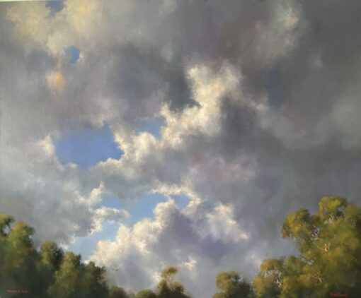 morpeth art gallery, hunter valley, newcastle, nsw, investment art, fine art, original, artwork, collector, investment, artist, oil, sofala, kangaroo valley, bellingen, gloucester, macleay valley, hill end, board, stretched canvas, landscape, seascape, through the clouds, figurative, clouds, cloud, australian art gifts,