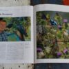 morpeth art gallery magazine international american collector artist june 176 2020 131 stephen jesic