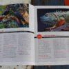 morpeth art gallery magazine international artist june july 2021 139 stephen jesic