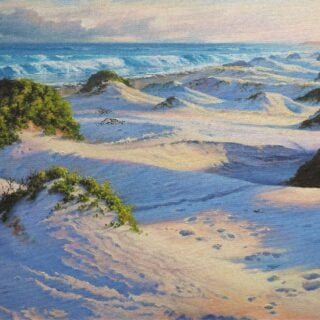morpeth art gallery, hunter valley, newcastle, nsw, investment, fine, original, artwork, collector, artist, artists, investment, wilderness, landscape, coastal, underwater, oil, stretched canvas, canvas board, cotton duck board, lady elliot island, anna bay, fingal bay, nelson bay, kalbarri, blue holes, depot beach, smokey cape, port stephens, jimmys beach, bennetts beach, hawks nest, Jarvis bay, south coast, myall lakes, foster, north coast, snorkelling, diving, scuba diving, rainforest, underwater landscape, river red gums, Antarctic beech trees, lamington national park, conservation, environment, published artist, australian art gifts, scales, turtles, sea horses, sunset, sunrise, waves, seaweed, coral, fish, sting rays, cow tail sting ray, sea horses, wind carved shadows, coral, great barrier reef, published