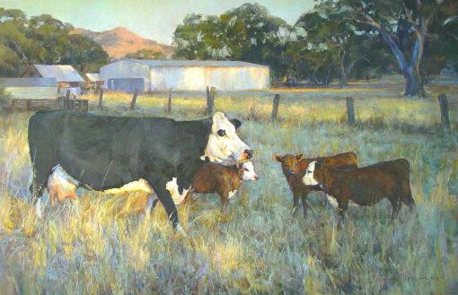 morpeth gallery hunter valley john mccartin landscape country cows triplets australia
